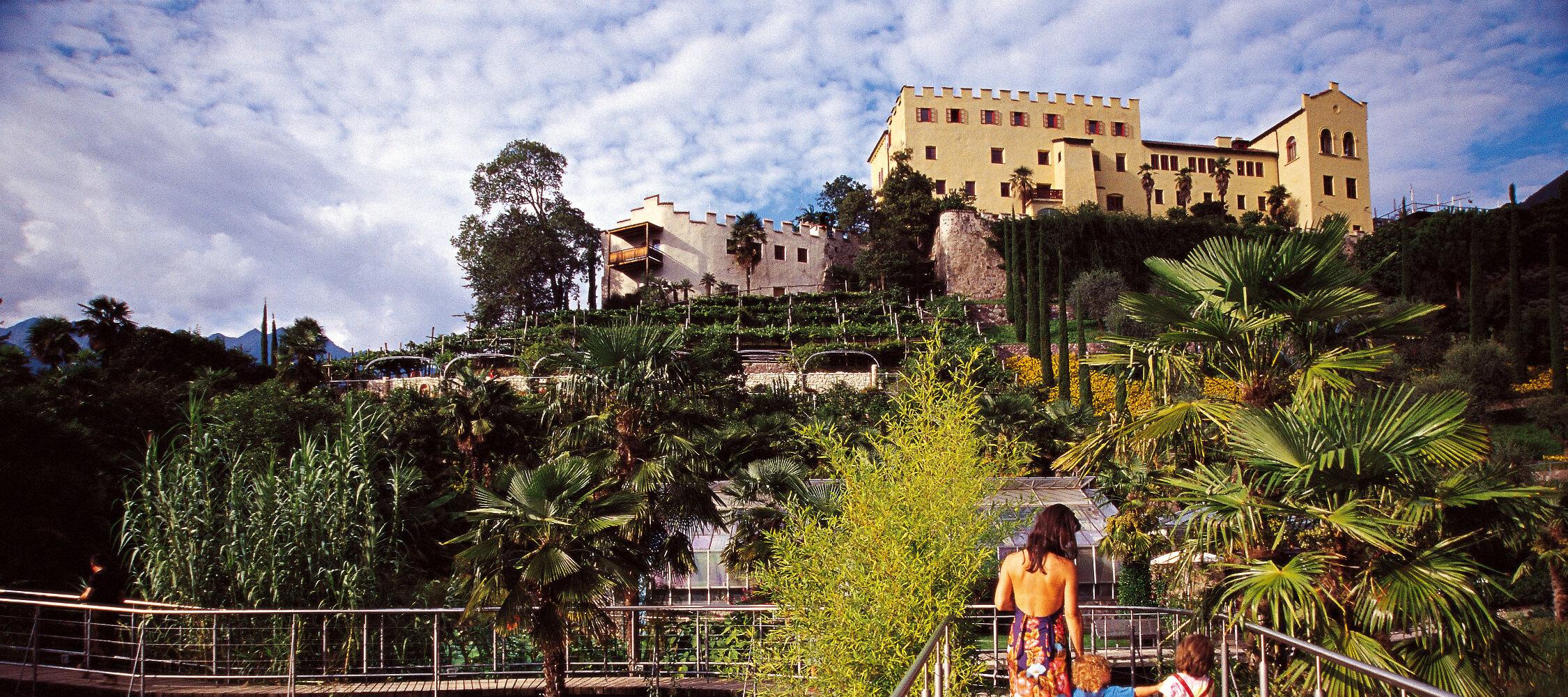 Italien-Trentino_Suedtirol_Alto_Adige_Merano_Meran_Natur_Besichtigen_Botanischer_Garten_Gaerten_von_Schloss_Trauttmansdorff_Panorama_Sommer_3_2250x1000