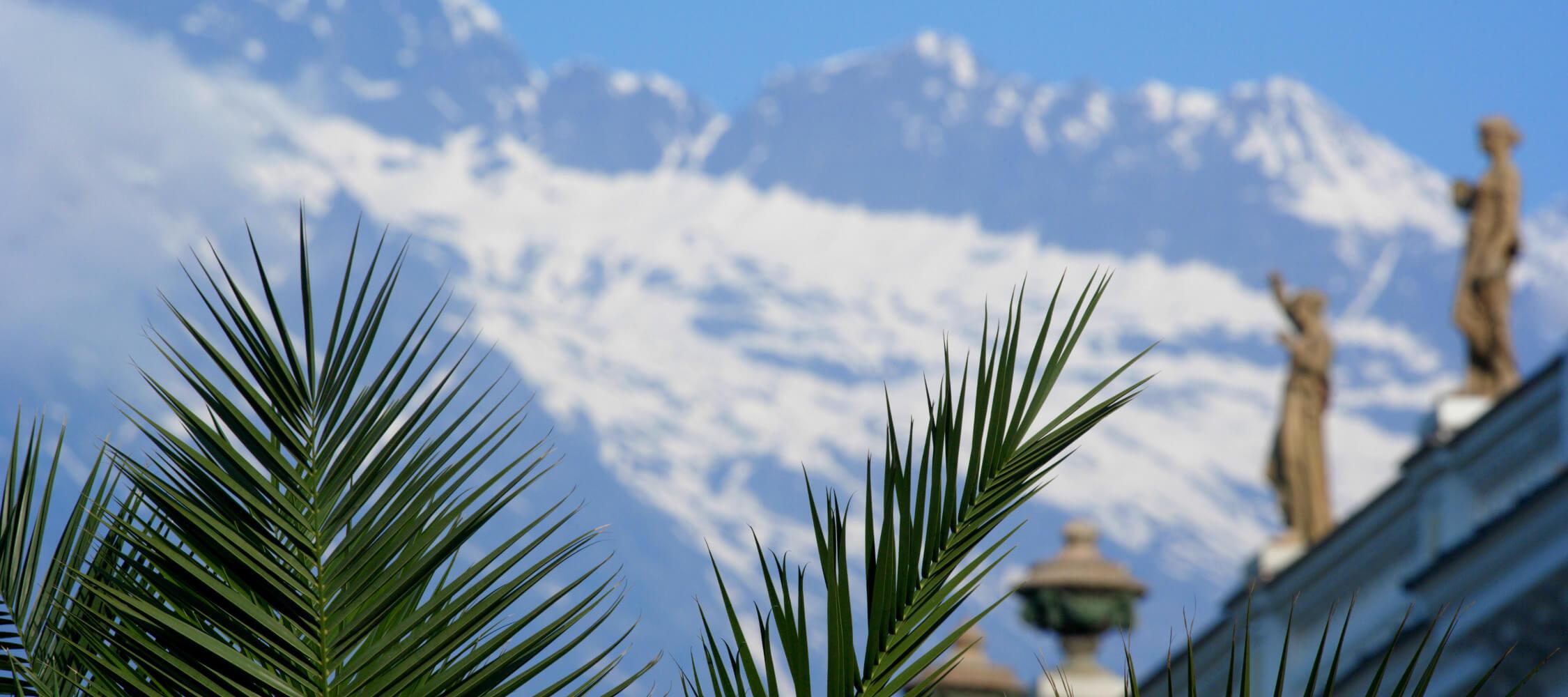 Italien-Trentino_Suedtirol_Alto_Adige_Merano_Meran_Natur_Fruehling_Palmen_Schnee_Kurhaus_MGM-Frieder-Blickle_mgm00366frbl_2250x1000