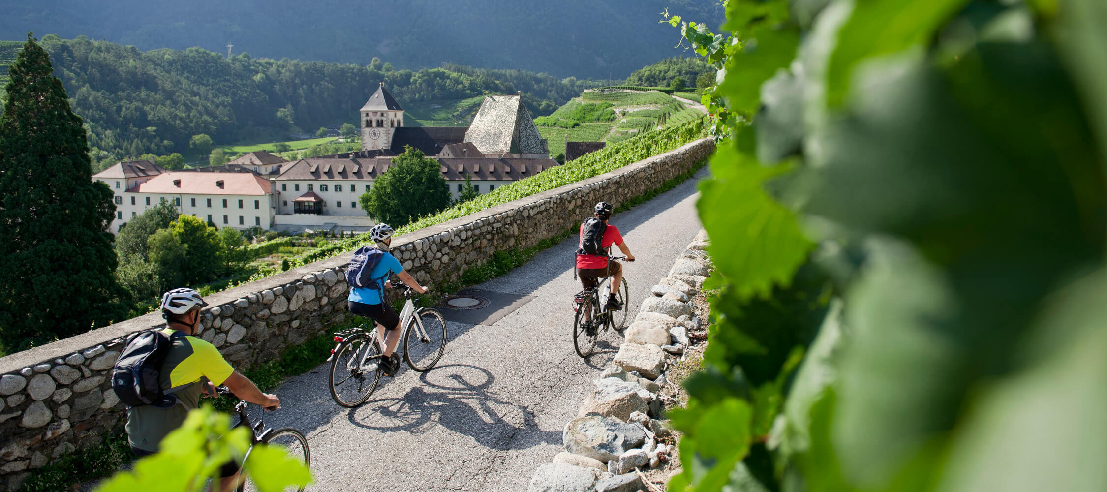 Italien-Trentino_Suedtirol_Alto_Adige_Merano_Meran_Natur_Sport_Sommer_Fahrrad_IDM-Alex-Filz_smg02204alfi_2250x1000