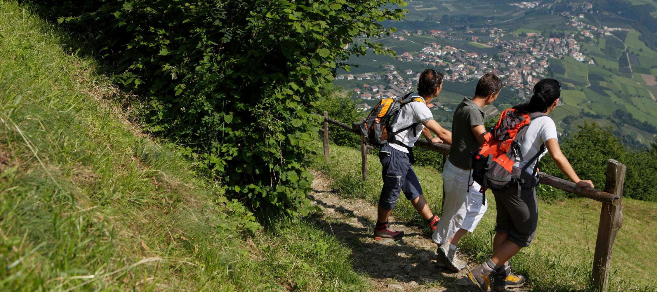 Italien-Trentino_Suedtirol_Alto_Adige_Merano_Meran_Natur_Sport_Sommer_Wandern_Berg_Hoehenweg_MGM-Frieder-Blickle_mgm00222frbl_2250x1000