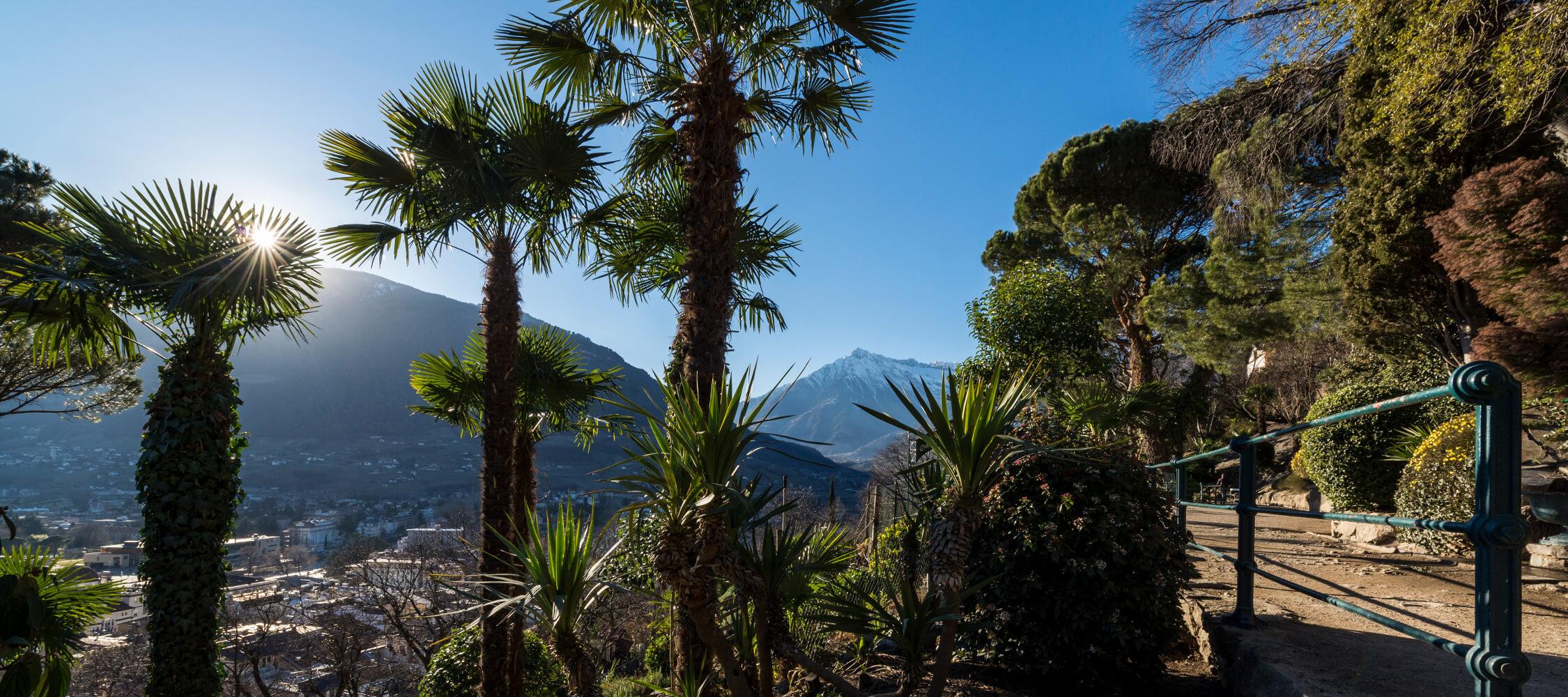 Italien-Trentino_Suedtirol_Alto_Adige_Merano_Meran_Natur_Winter_Tappeinerweg_Panorama_Kurverwaltung-Hannes-Niederkofler_21_2250x1000