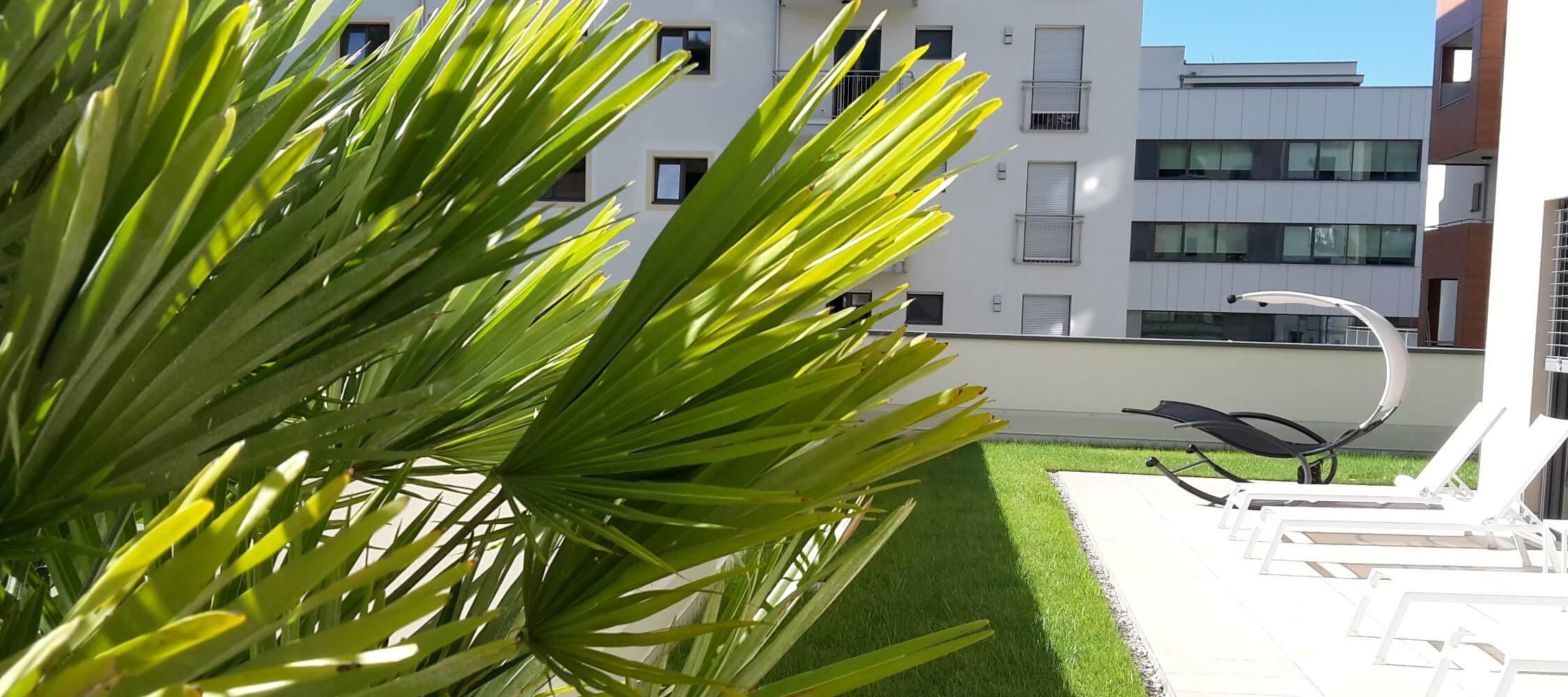 City_Hotel_Merano_Spa_Terrasse_Anguane_20160806_094234_2250x1000