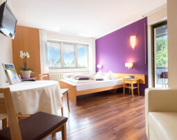 Hotel Flora, Merano, panorama, double room Orchid, 4th floor, private terrace, free WIFI