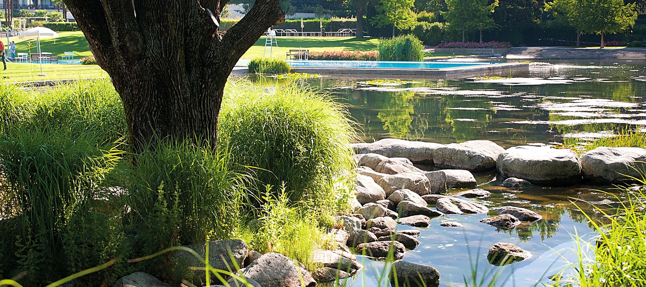 Italien-Trentino_Suedtirol_Alto_Adige_Merano_Meran_Therme_Pool_Aussen_Park_Wasser_Schwimmbad_DOCsrl_02_2250x1000