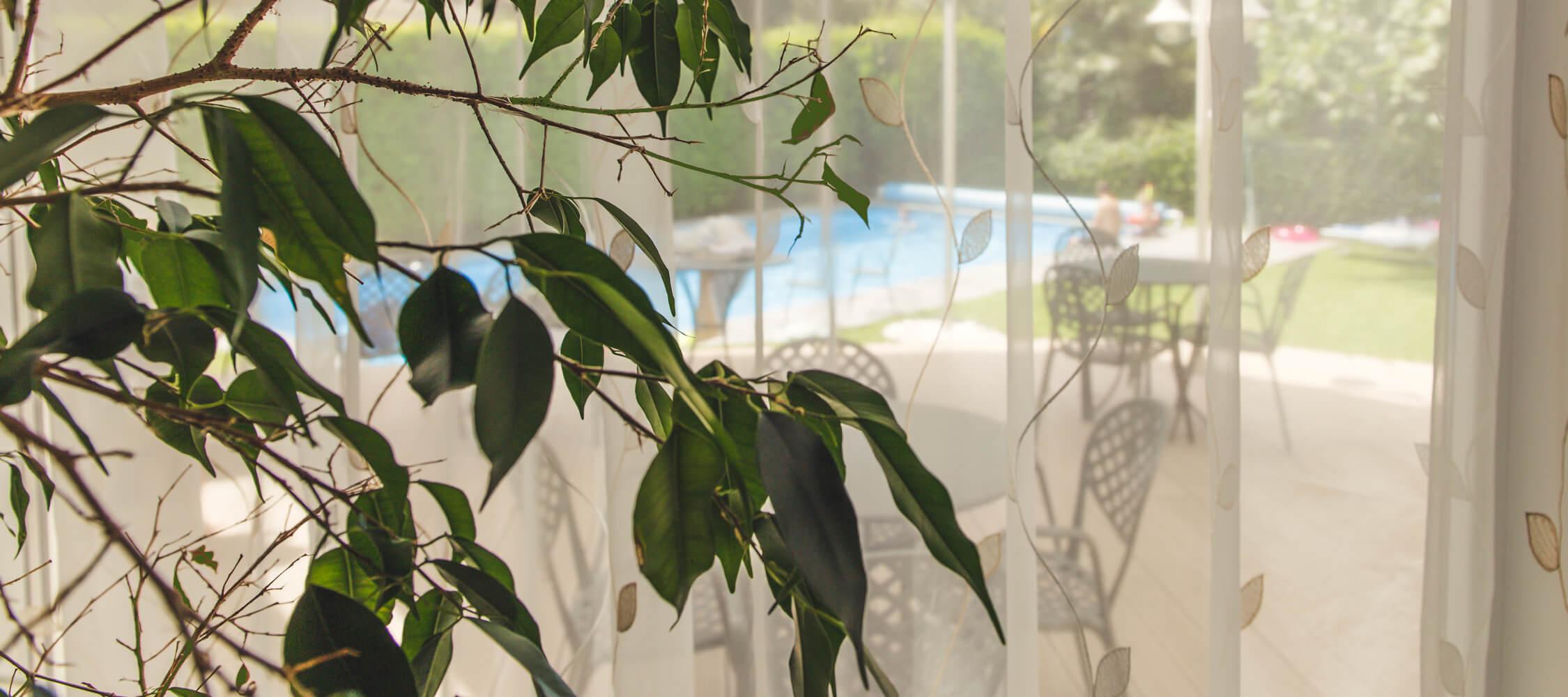Hotel-Villa-Laurus-Merano-Bar-Anguane-6798-2250x1000