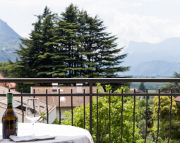 Hotel-Villa-Laurus-Merano-Rooms-Einzelzimmer-Solo-Balkon-Detail-Anguane-6887-255x202